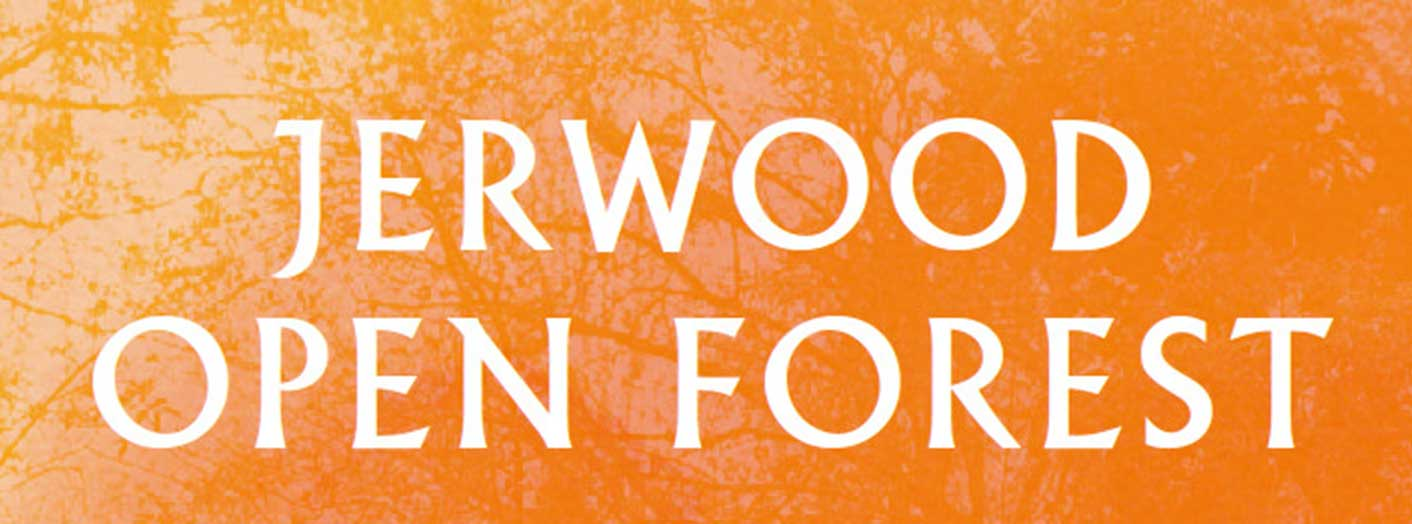 Jerwood Open Forest (commission)