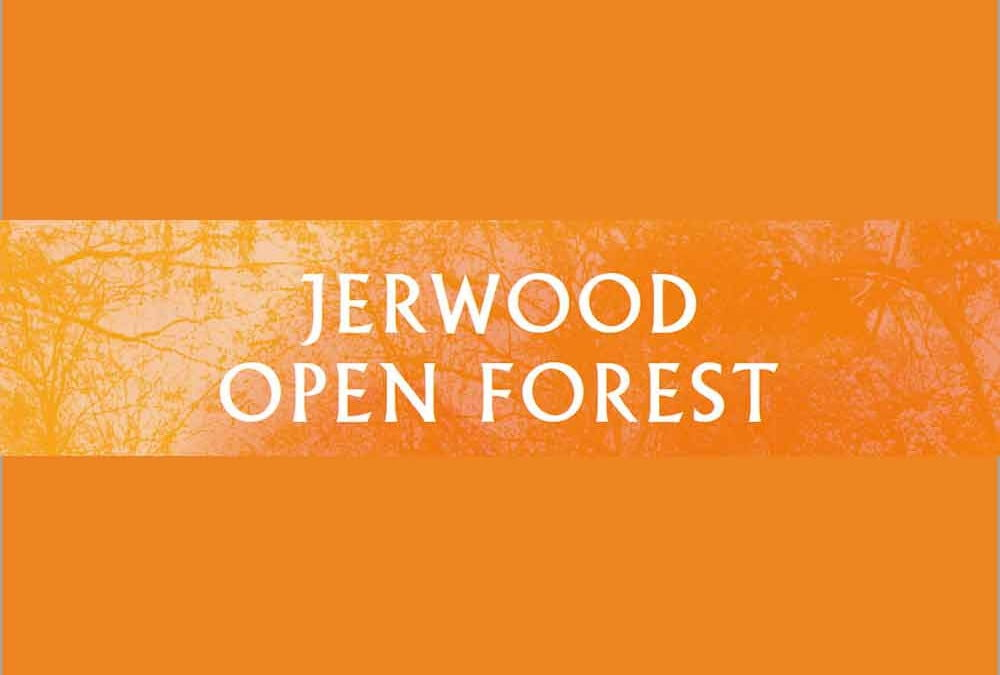 Jerwood Open Forest CFP