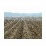 CCANW—SoilCulture-Book-field