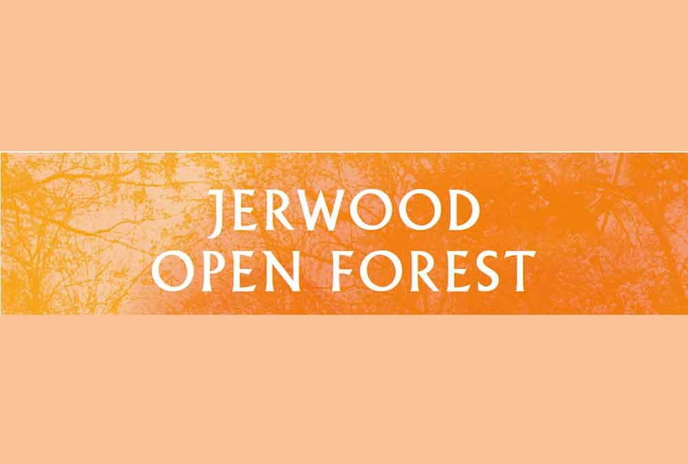 Jerwood Open Forest