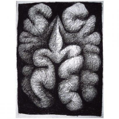 randall-page-walnutI