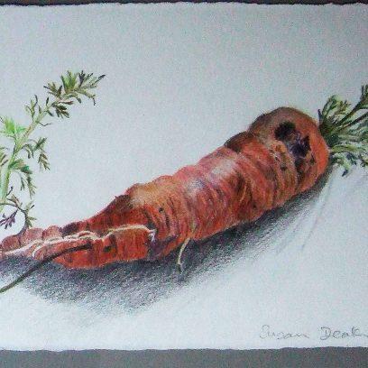 deakin-carrots-shopmain