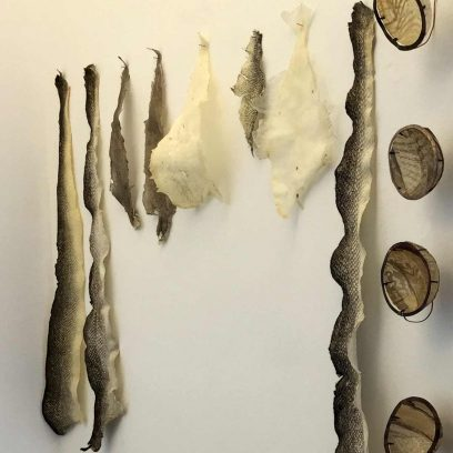 artshop-furre-fishskins-detail1