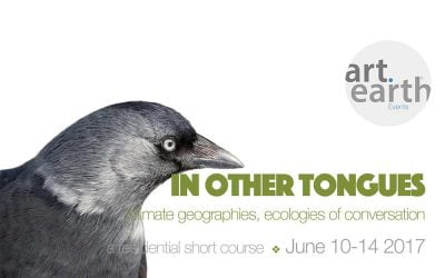 In Other Tongues – short course