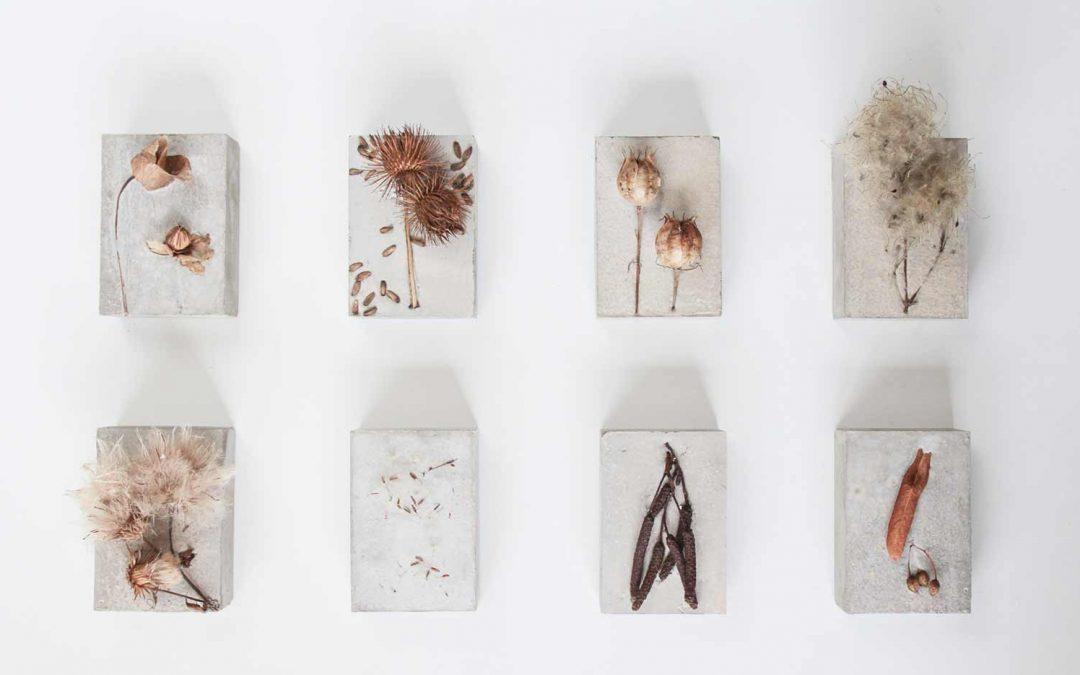 Exhibition:  Amélie Beaudroit, Agata Engelman, Elli Lestas