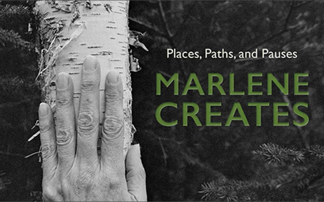 Review of latest Marlene Creates book