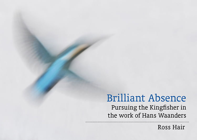 Brilliant Absence: pursuing the Kingfisher…