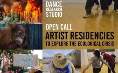 Artist Residencies: explore the ecological crisis